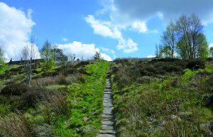 The Calderdale Way in Cragg Vale